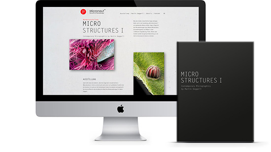Micronaut – Corporate Design